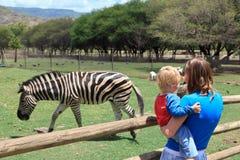 Família que olha a zebra Imagem de Stock Royalty Free
