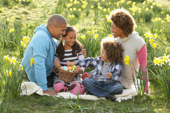 Família que relaxa no campo de Daffodils da mola imagens de stock royalty free