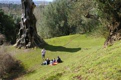 Família que tem um piquenique no parque de Cornualha, Auckland Nova Zelândia imagens de stock royalty free