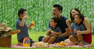 Família que toma parte num piquenique e que joga bolhas de sabão vídeos de arquivo