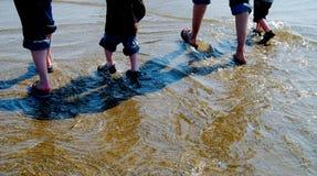 Família que vadeia na maré baixa Imagens de Stock Royalty Free