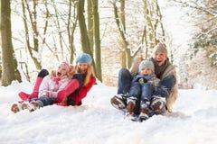 Família Sledging através da floresta nevado Fotos de Stock