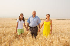 Família sobre um campo Fotos de Stock