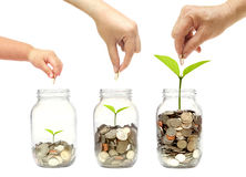 A família vai economia verde Fotografia de Stock