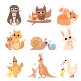 Famílias animais bonitos grupo, pinguim, coruja, esquilo, Fox, caracol, coelho, galinha, canguru, ilustração do vetor do ganso ilustração do vetor