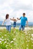 Famílias na natureza Fotos de Stock