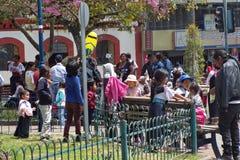 Famílias no parque imagens de stock royalty free