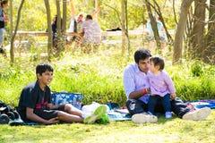 Famílias novas em um piquenique do parque fotografia de stock royalty free