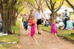 Famílias novas em um piquenique do parque fotografia de stock