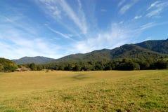 Fam dans la vallée sous les montagnes Image libre de droits