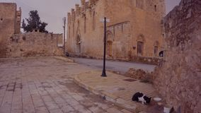 Car and cat on ancient streets in the center of the fortress of Famagusta. FAMAGUSTA/CYPRUS - 12.30.2016 stock video