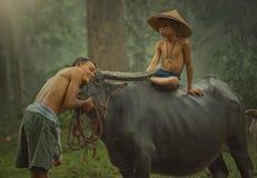 famer传统生活在乡下泰国 免版税库存图片