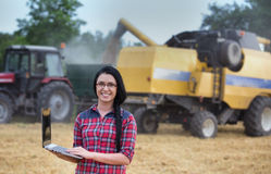 Famer girl with laptop in the field during harvest Stock Images