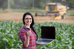 Famer girl with laptop in the field Stock Images