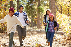 Famiglia afroamericana che cammina attraverso il terreno boscoso di caduta Fotografie Stock Libere da Diritti