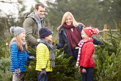 Famiglia all'aperto che sceglie insieme l'albero di Natale Immagine Stock Libera da Diritti