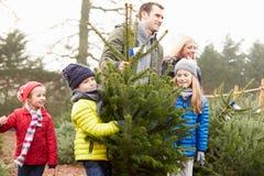 Famiglia all'aperto che sceglie insieme l'albero di Natale Immagini Stock Libere da Diritti
