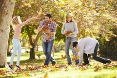 Famiglia che getta Autumn Leaves In The Air Fotografia Stock