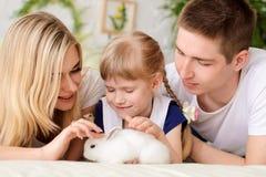 famiglia che gioca con il coniglio bianco fotografie stock