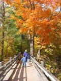 Famiglia che gode dei colori di caduta Fotografia Stock