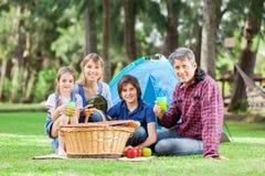Famiglia che ha buon tempo in parco Fotografia Stock