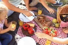 Famiglia che ha picnic in parco il giorno soleggiato, immagini stock libere da diritti