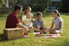Famiglia che ha picnic in sosta. Fotografie Stock