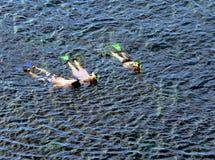 Famiglia che naviga usando una presa d'aria insieme Fotografia Stock Libera da Diritti