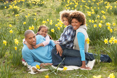 Famiglia che si distende nel campo dei Daffodils della sorgente Fotografie Stock Libere da Diritti