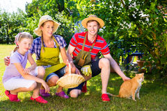 Famiglia con il gatto che fa il giardinaggio nel giardino Fotografie Stock