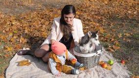 Famiglia con la merce nel carrello del cane che gode di un giorno di autunno che si siede sul plaid con le mele sulla natura stock footage
