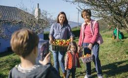 Famiglia con la merce nel carrello delle mele che posa alla foto Fotografia Stock Libera da Diritti
