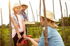 Famiglia degli agricoltori in giardino Fotografie Stock Libere da Diritti
