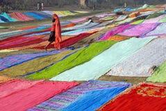 famiglia degli Rondella-uomini in India Fotografia Stock Libera da Diritti
