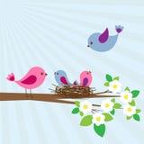 Famiglia degli uccelli illustrazione di stock