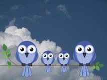 Famiglia degli uccelli Fotografia Stock Libera da Diritti