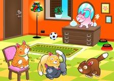 Famiglia dei gatti nella casa. Fotografia Stock