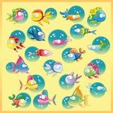 Famiglia dei pesci Fotografia Stock Libera da Diritti