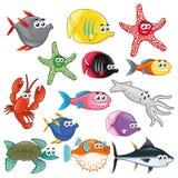 Famiglia dei pesci divertenti. Fotografia Stock Libera da Diritti