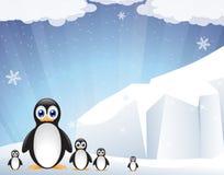Famiglia dei pinguini in modo divertente Fotografia Stock