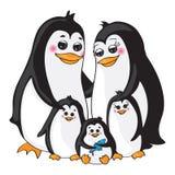 Famiglia dei pinguini su fondo bianco Immagine Stock Libera da Diritti