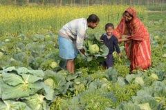 Famiglia del coltivatore Immagini Stock Libere da Diritti