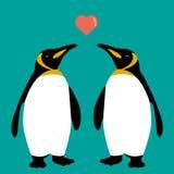 Famiglia del cuore di amore delle coppie dei pinguini sveglia immagini stock