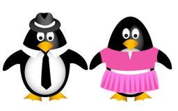 Famiglia del pinguino con la madre del padre Fotografia Stock Libera da Diritti