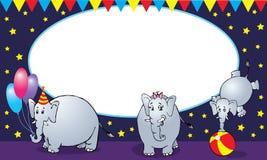 Famiglia dell'elefante del circo Fotografia Stock Libera da Diritti