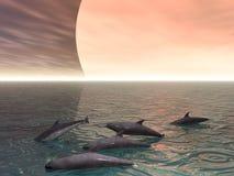 Famiglia della focena Immagini Stock