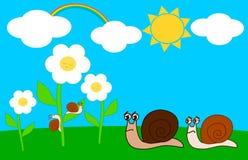 Famiglia delle lumache nel prato un giorno soleggiato Immagini Stock