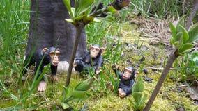 Famiglia dello scimpanzé Fotografie Stock Libere da Diritti