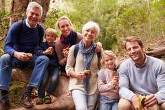 Famiglia di diverse generazioni che mangia in una foresta, ritratto fotografia stock libera da diritti