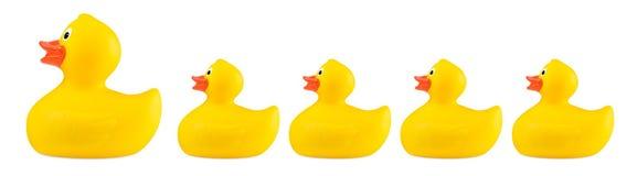 Famiglia di gomma classica gialla del giocattolo dell'anatra del bagno Fotografia Stock